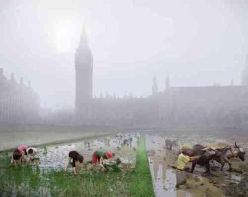 London-futures-parliament-squa