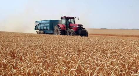 agriculture, île-de-France