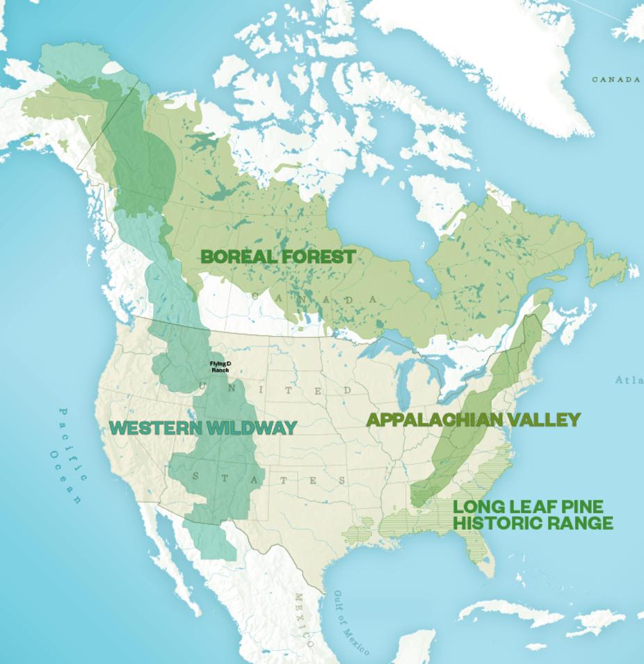 Corridors fauniques quatre propositions à des parties «de REWILD» de l' Amérique du Nord. Smithsonian Institute  CC BY-NC