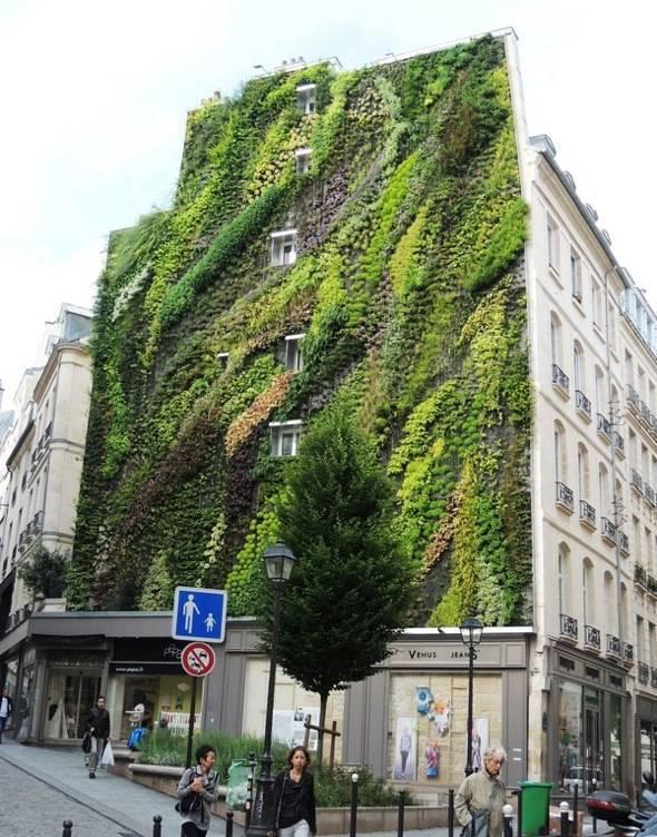 mur vert paris 2eme
